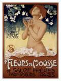 Fleur de Mousse Reproduction procédé giclée par Leopoldo Metlicovitz