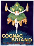 Cognac Briand Giclee Print by Stephane 