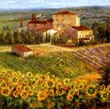 Village provençalIII Affiches par Michael Longo