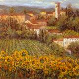 Villaggio provenzale IV Poster di Michael Longo