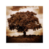Meadow Land I Affiches par Bill Philip