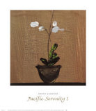 Pacific Serenity I Prints by David W. Jackson