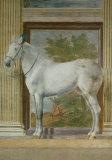 Mantua Fresco I Posters by Giulio Romano