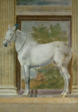Mantua Fresco I Print by Giulio Romano