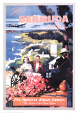 Bermuda by Clipper Print