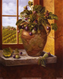 Figs in Tuscany Prints by Nancy Wiseman