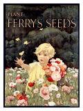 Ferry's Seeds Giclée-tryk