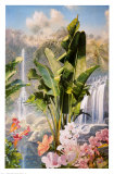 Cascate tropicali Stampe