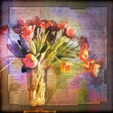 Vase of Tulips and Text Photographic Print by Colin Anderson