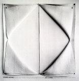 Black and White Felts Sammlerdrucke von Robert Morris