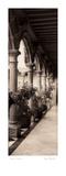 Palais de Valdespino Poster par Alan Blaustein