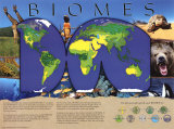Biomes Overall Art