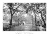 El paseo del poeta, Parque Central, Ciudad de Nueva York Láminas por Henri Silberman