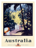 Australia Queensland Rain Forest Giclee Print