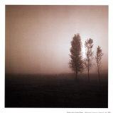 Bäume in Bordeaux Kunstdrucke von Richard D'Amore