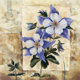 Columbine in Bloom Prints by Richard Henson