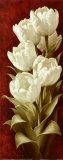 Splendidi tulipani II Stampe di Igor Levashov
