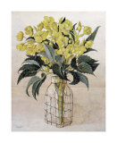 Hellebore in Wire Bottle Poster
