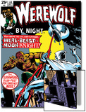 Werewolf By Night No.33 Cover: Moon Knight and Werewolf By Night Prints by Don Perlin