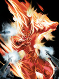 The Marvels Projects No.2 Cover: Human Torch Poster by Steve MCNiven