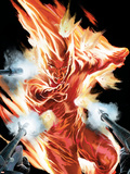 The Marvels Projects No.2 Cover: Human Torch Plastic Sign by Steve MCNiven