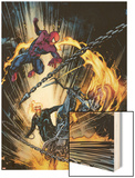 Amazing Spider-Man and Ghost Rider: Motorstorm No.1 Cover Wood Print by Roberto De La Torre