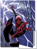 Spider-Man Unlimited No.1 Cover: Spider-Man Posters by Andy Kubert