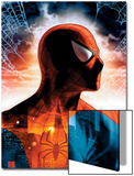 Spider- Man Unlimited No.8 Cover: Spider-Man Posters by  Shinkiro