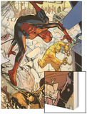 Marvel Adventures Spider-Man No.24: Spider-Man and Absorbing Man Fighting Wood Print by Rob Disalvo
