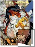 Marvel Adventures Spider-Man No.24: Spider-Man and Absorbing Man Fighting Posters by Rob Disalvo