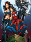 Ultimate Spider-Man No.52 Cover: Spider-Man, Elektra and Black Cat Plastic Sign by Mark Bagley