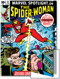 Marvel Spotlight: Spider-Woman No.32 Cover: Spider Woman and Nick Fury Fighting Art by Sal Buscema
