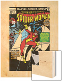 Spider-Woman No.1 Cover: Spider Woman Wood Print by Carmine Infantino