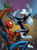 Marvel Adventures Spider-Man No.22 Cover: Spider-Man, Black Cat, and Mandarin Plastic Sign by Mike Choi
