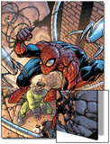 Marvel Adventures Two-In-On No.19 Cover: Spider-Man and Doctor Octopus Art by Zach Howard