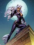 Ultimate Spider-Man No.152 Cover: Black Cat Standing on a Rooftop at Night Plastic Sign by J. Scott Campbell