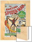 Amazing Spider-Man No.1 Cover: Spider-Man Wood Print by Steve Ditko