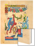 Amazing Spider-Man Annual No.1 Cover: Spider-Man Wood Print by Steve Ditko