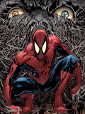 The Amazing Spider-Man No.553 Cover: Spider-Man Plastic Sign by Phil Jimenez