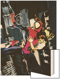 Ultimatum: Spider-Man Requiem No.1 Cover: Spider-Man Wood Print by Stuart Immonen