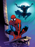 Ultimate Spider-Man No.112 Cover: Spider-Man and Green Goblin Plastic Sign by Stuart Immonen