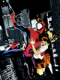 Ultimatum: Spider-Man Requiem No.1 Cover: Spider-Man Plastic Sign by Stuart Immonen