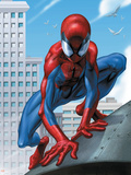 Ultimate Spider-Man No.30 Cover: Spider-Man Wall Decal by Mark Bagley