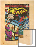 The Amazing Spider-Man No.137 Cover: Spider-Man and Green Goblin Wood Print by Ross Andru