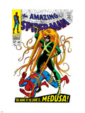 The Amazing Spider-Man No.62 Cover: Spider-Man and Medusa Fighting Plastic Sign by John Romita Sr.