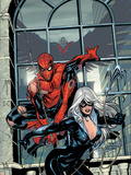 Marvel Knights Spider-Man No.4 Cover: Spider-Man and Black Cat Plastic Sign by Terry Dodson