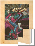 The Amazing Spider-Man: The Short Halloween No.1 Cover: Spider-Man Wood Print by Kevin Maguire