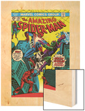 The Amazing Spider-Man No.136 Cover: Spider-Man and Green Goblin Wood Print by Ross Andru
