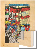 Spider-Woman No.20 Cover: Spider Woman and Spider-Man Fighting Wood Print by Frank Springer