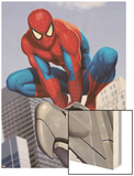 Spider-Man In the City on Gargoyle Wood Print